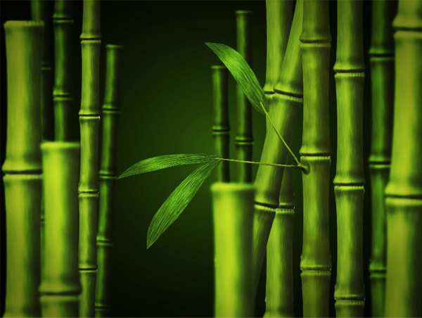 Create Bamboo in Adobe Photoshop 35 Fresh and Useful Photoshop  Tutorials