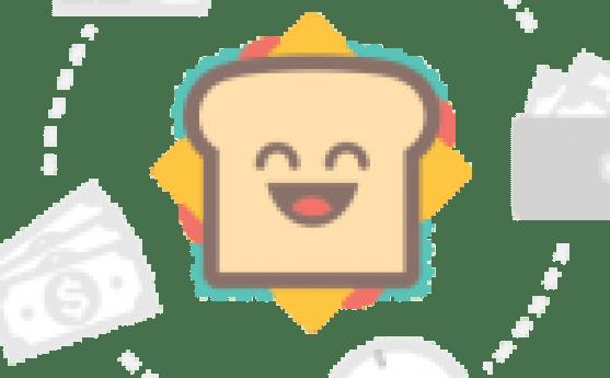 gimp-2.8