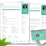 Clean Professional CV