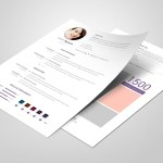 Clean Editable Resume