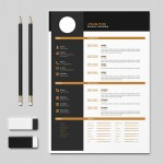 Flat Indesign Resume