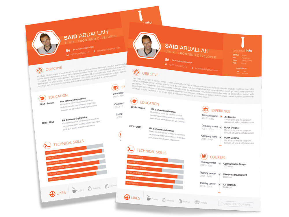 Free Flat Developer Resume Template with Clean Design