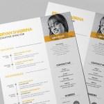 Yellow Vector Resume