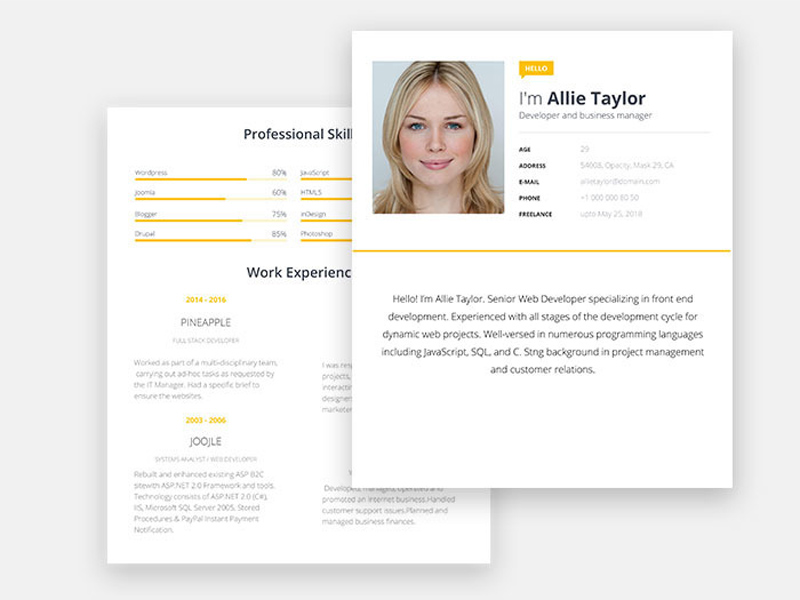 Free Word Resume Template With Modern Look