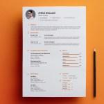 Amele Resume