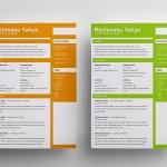 Clean Flat CV Template