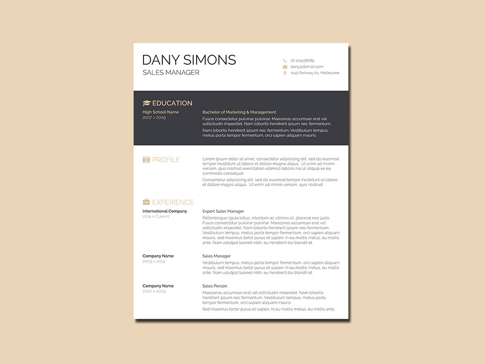 free salesman resume template with simple design
