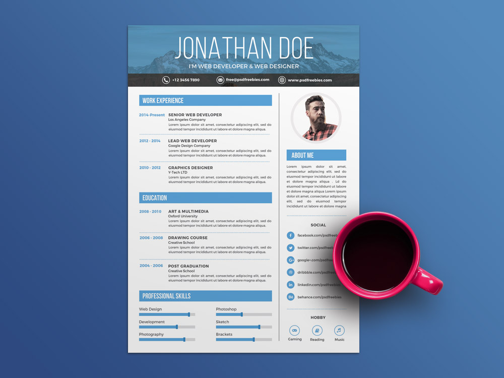 Free Creative Professional CV Template for Job Seeker