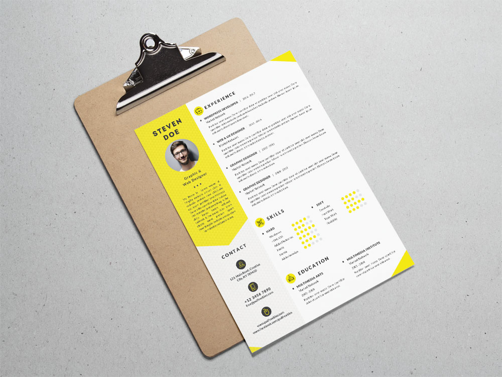 Free Clean Resume Template for Job Seeker