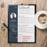 Minimal Professional CV