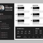 Creative Horizontal Resume