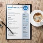 Effective Resume Template