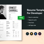 Simple Developers Resume