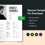 Simple Developers Resume