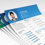 Editable Multiformat Resume