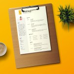 Kevin Resume Template