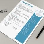 Formal Designer Resume