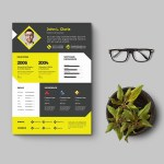 Clean Designer CV