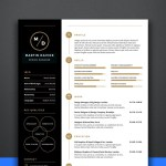 Manager CV/Resume Template