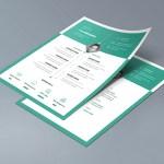 Infographic Curriculum Vitae
