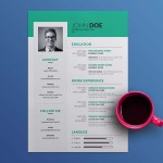 Simple Vector Resume