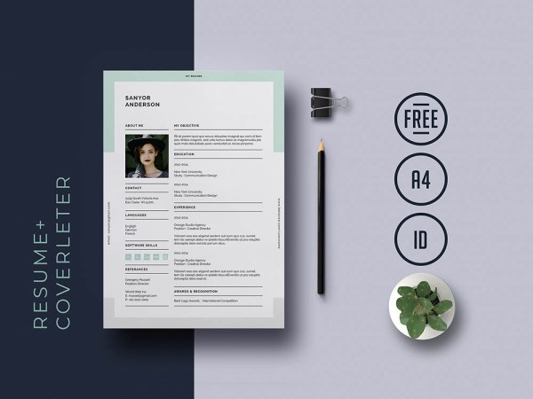 Free Universal Indesign Resume Template with Matching Cover Letter