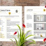 Modern Indesign Resume