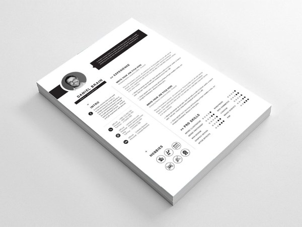 Free Chief Executive Resume Template with Professional Design