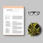 Junior Accountant Resume