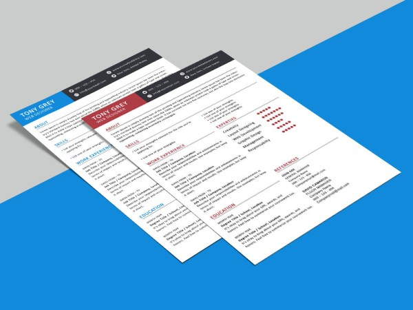 Free Simple 2 Pages Resume Template