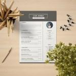 Digital Content Manager Resume