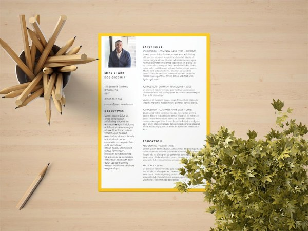 Free Dog Groomer Resume Template with Professional Look