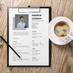 Chief Operating Officer Resume