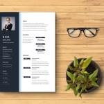 Financial Accountant CV Resume