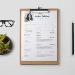 Call Center Representative Resume