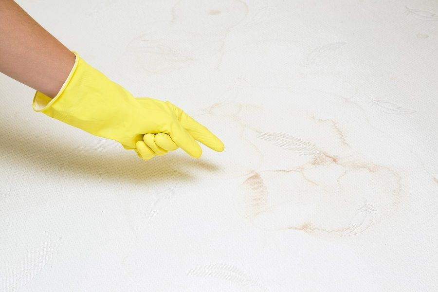 How to get Stains out of Memory Foam Mattress