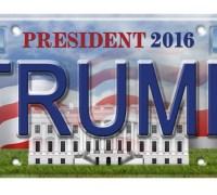 trump-licenseplate