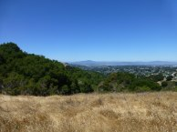 Mt. Tamalpais as seen from the Sobrante Ridge Tr.