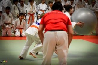 judolle-dag-zandhoven-7-januari-2017-209