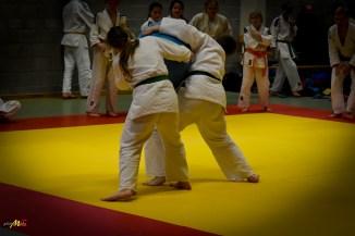 judolle-dag-zandhoven-7-januari-2017-77