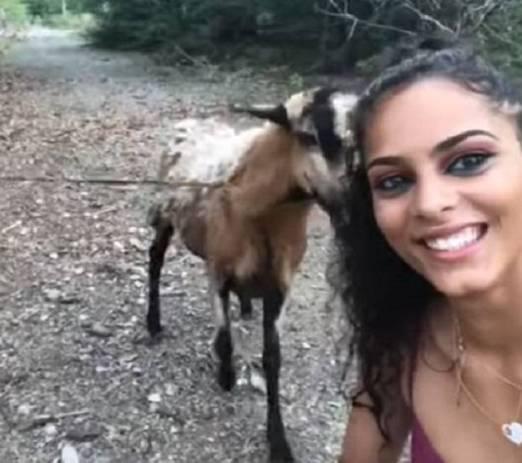 बकरे के साथ सेल्फी युवती को पड़ी महंगी, कर दिया हमला और फिर...