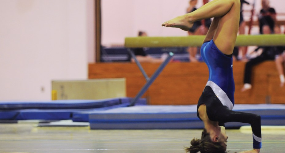 2013 Gymnastics Roster Announced