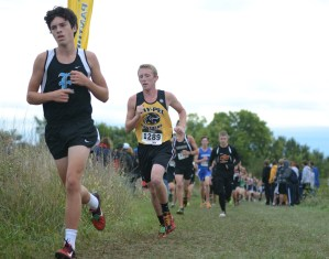 Gallery: Cross Country Metro Championships