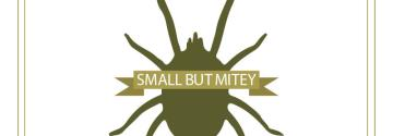 Small But Mitey: The Rise of the Oak Mite