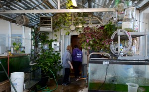 Environmental Education Class Seeks to Bring Back Class