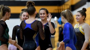 Gallery: Girls Gymnastics wins district meet