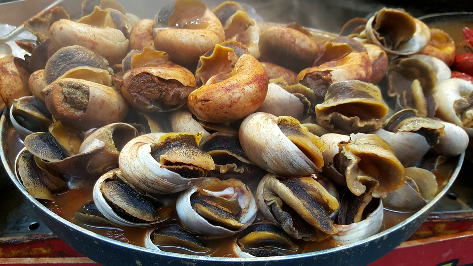 Nice snail meal from snail farming