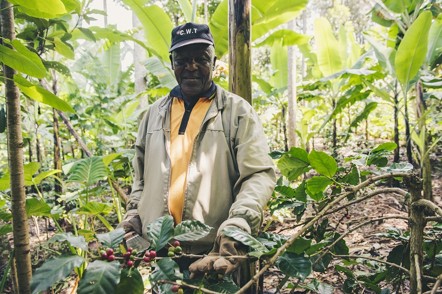Win $100,000 at the Africa Food Prize 2020