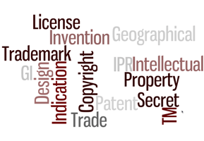 IP Framework Needed for FDI: SPAG Survey