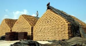 FSSAI to Come Up with Standards for Fortification of Food Grains